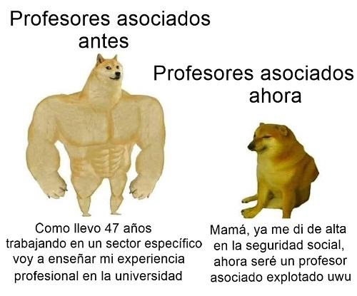 profesor-asociado